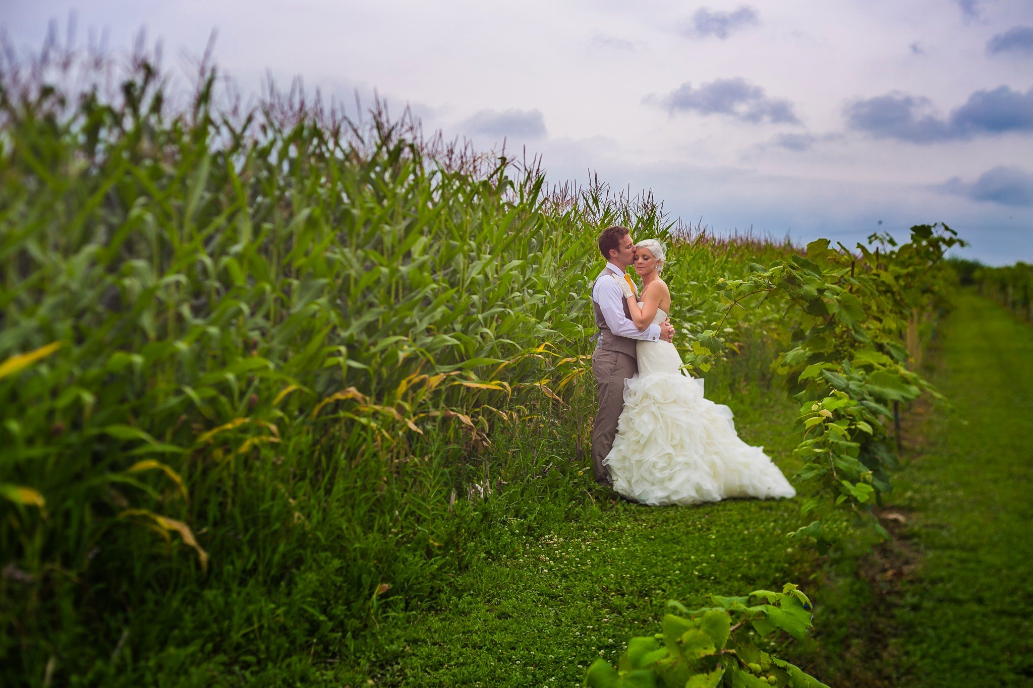 bride and groom standing in vineyard