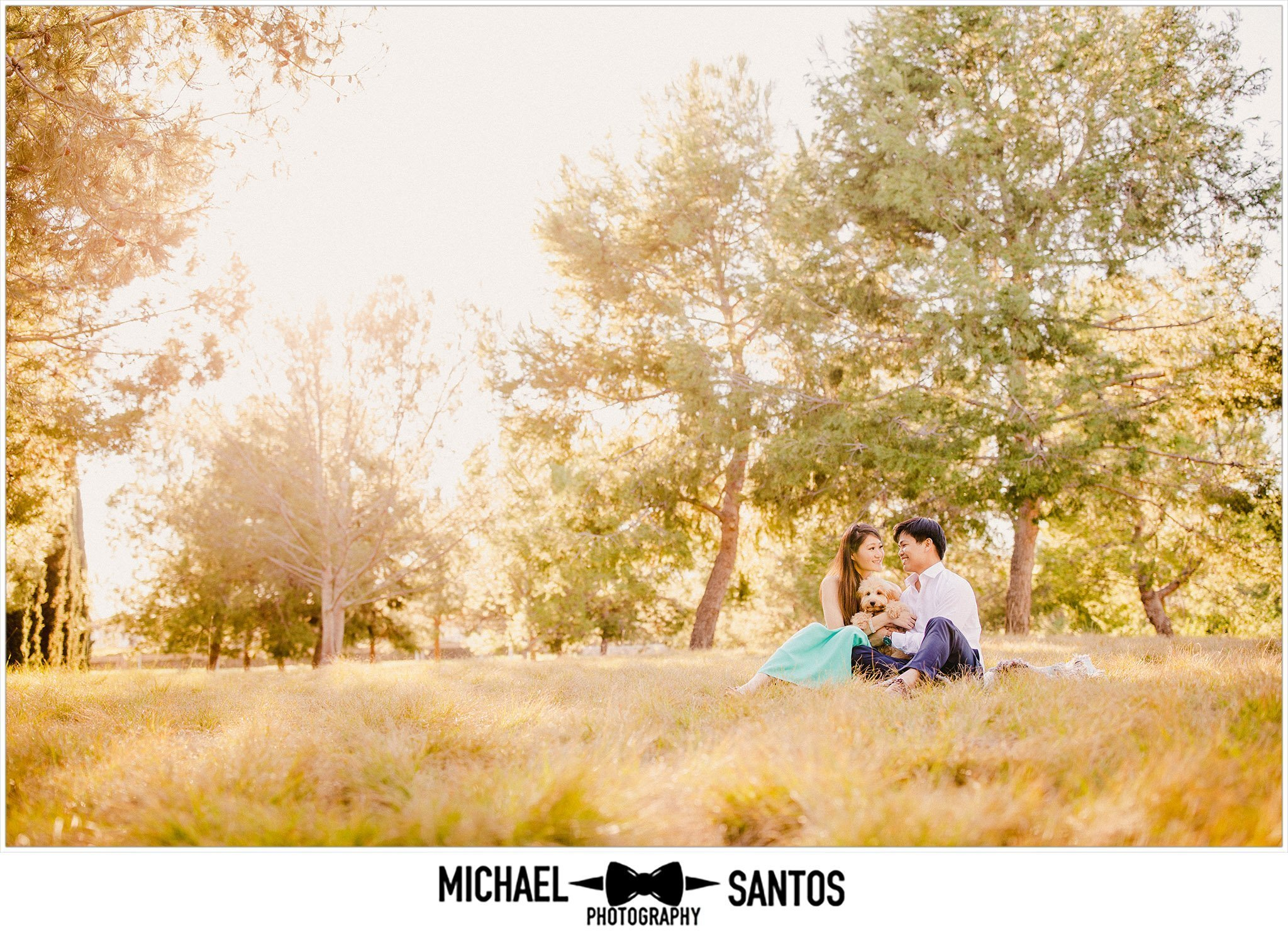 wide photo of a couple sitting in the park with their dog at jeffrey open space trail during their engagement session